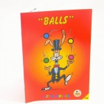 Mr Babache balls booklet - learn juggling
